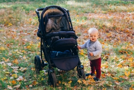 Top 10 Best Sit and Stand Strollers in 2020