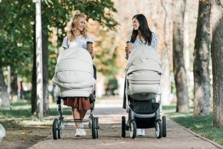 Top 12 Maxi Cosi Strollers Reviews in 2020 - Complete Guide